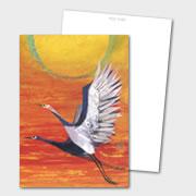 book_top_postcard2_01
